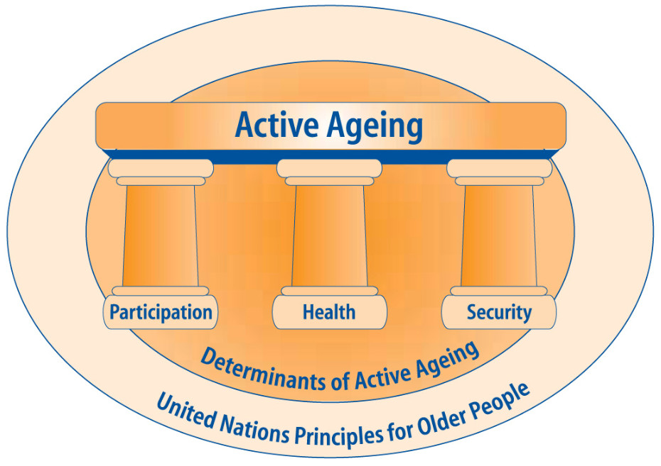The Three Pillars of a Policy Framework for Active Ageing (World Health Organisation, 2002, p. 45)